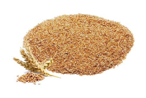 farelo-de-trigo-natural-brasil
