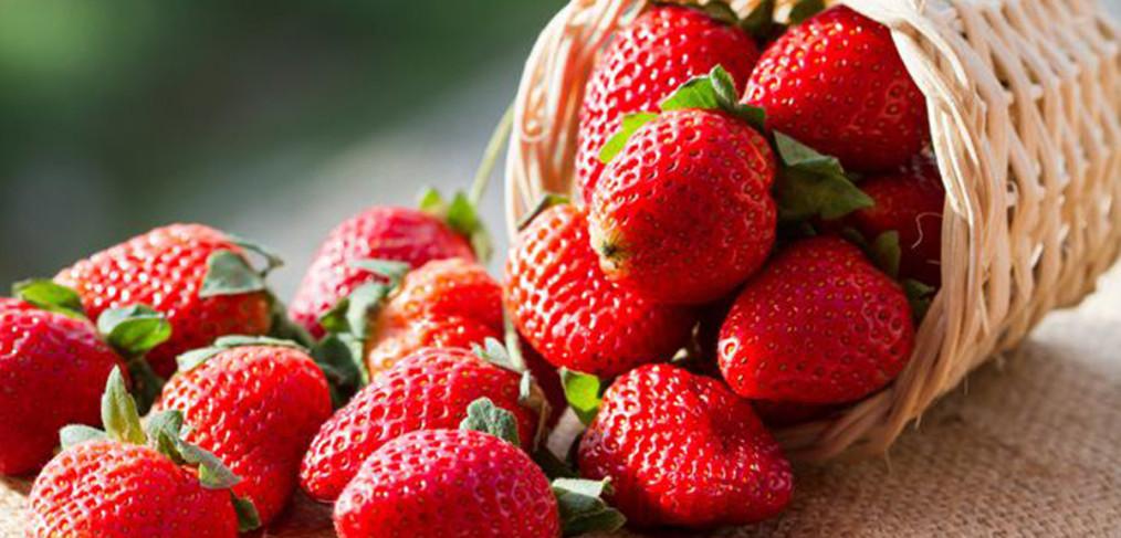 5 receitas com morango para emagrecer - light e saborosa