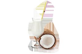 poupa de coco natural brasil